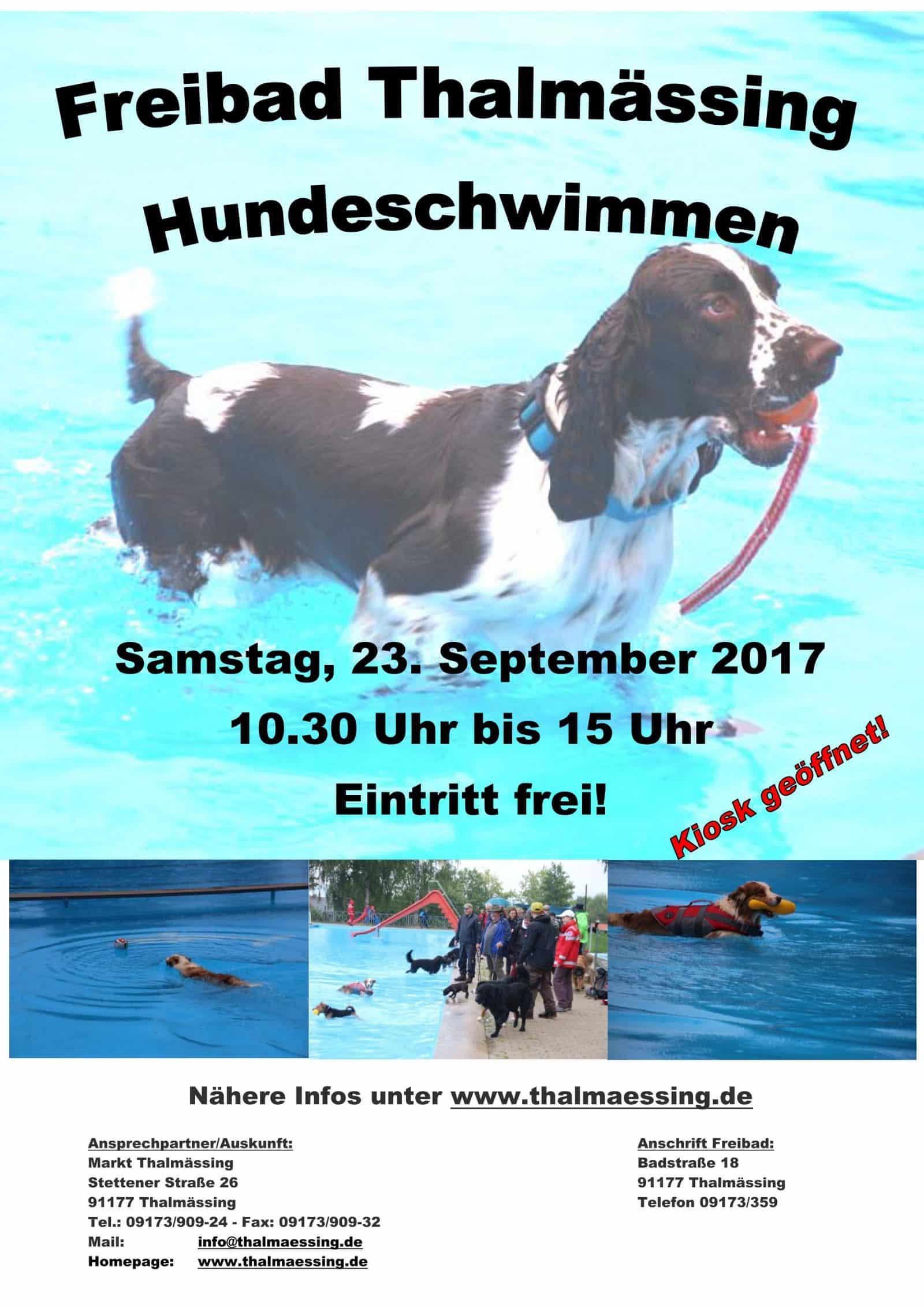 plakat-werbung-hundeschwimmen-2017_neu_01